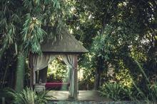 RedDoor - Entangled in Natural Vibe of Canggu - 7